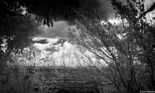A travers les branchages, le lac Trasimène et au fond sa rive nord.