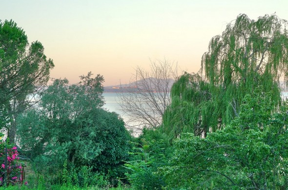 Idem.En arrière-plan, Castiglione del Lago.Rendu impressionniste.19/07/2016  -  05:59