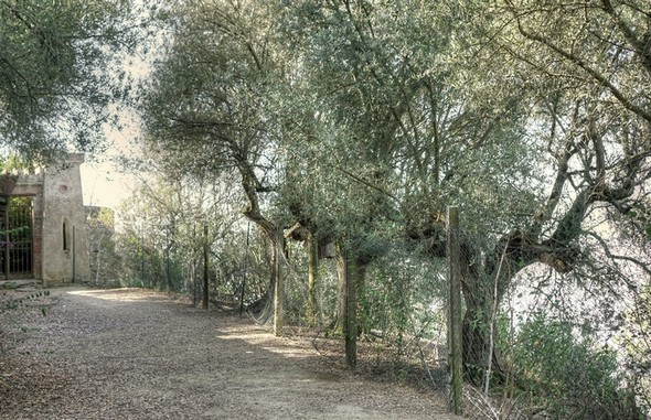 En débouchant sur la strada di San Michele Arcangelo, on trouve en face de soi, un court chemin sans issue.Il donne sur une des poternes latérales du château Guglielmi.Sa grille est condamnée.
