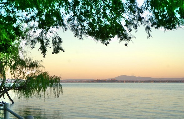 Vue prise du bord de notre jardin.En arrière-plan, sur sa butte, Castiglione del Lago déjà baigné par les rayons de soleil.Rendu impressionniste.19/07/2016 - 06:02