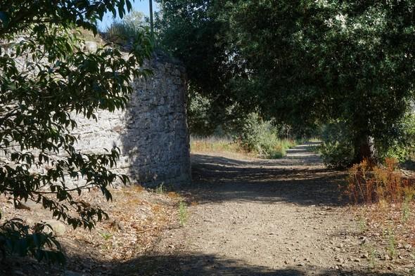 Idem.Un peu plus loin, en direction du nord.Une partie de la base du moulin est visible (quadrant supérieur gauche).