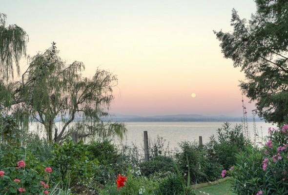 Partie de notre jardin, le lac Trasimène et la pleine lune.Rendu réel / naturel.20/07/2016 - 05:49