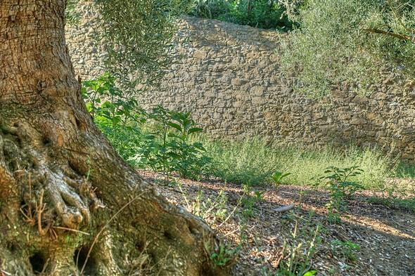 Du côté droit de la strada, le mur d'enceinte du jardin du château Guglielmi.