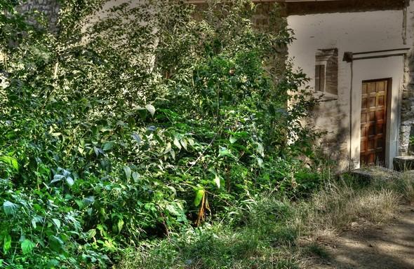 Petite porte arrière de la chiesa di San Salvatore.