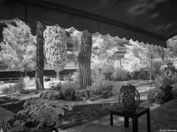 Vue de laterrasse extérieure (salon, salle à manger) sur une partie du jardin et sur le lac Trasimène.2/08/2016 - 13:40