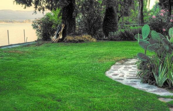 La pelouse qui borde la darse du côté jardin.