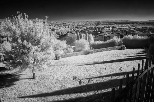Ce flanc de la colline de Tuoro-sul-Trasimeno.