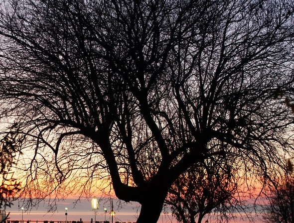 Depuis la via Guglielmi, un des rares entraperçus du lac Trasimène et son coucher de soleil.