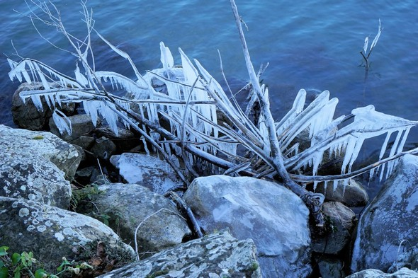Le gel a parsemé la rive du lungolago de l'Isola Maggiore d'une parure féérique de saison.