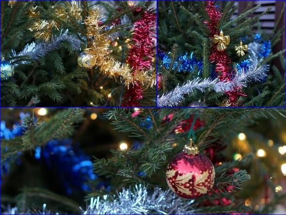 Colori, incanto e  gioia delle feste di fine anno. Albero di Natale installato da Cristiano nella via Guglielmi..