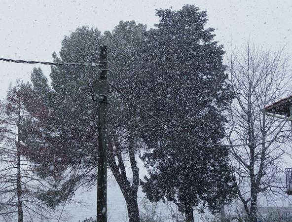 Ciel gris, ouaté, couvert et les flocons commencent à s'en donner à coeur joie...