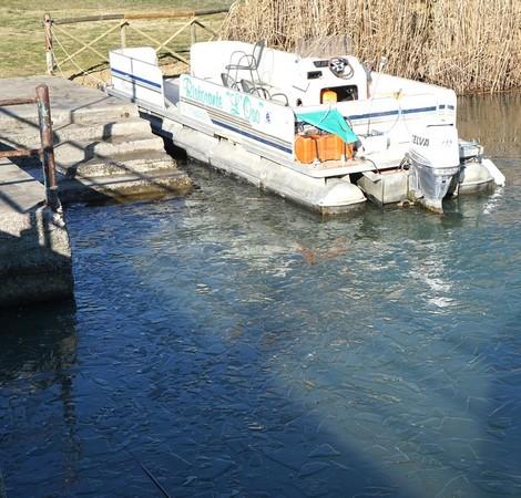 2La barque du restaurant L'Oso, amarrée au début du pontile de Tuoro-Navaccia, est entourée de glaçons .