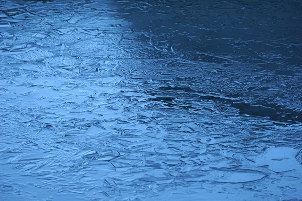 Un bel objet éphémère créé par la nature :La plaque de glace en formation dans notre darse privée.
