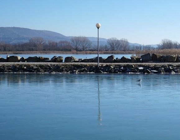 13Un premier oiseau teste la consistance de la plaque de glace le long de la digue du Porto del Sole.