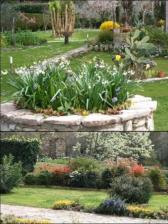 Deux brefs exemples de l'enrichissement floral actuel !24/03/2017