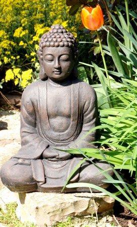 """""""Le changement n'est jamais douloureux. Seule la résistance au changement est douloureuse.""""Bouddha"""