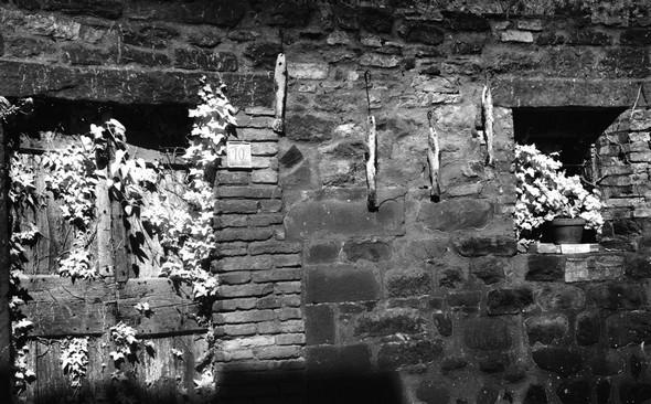 Côté ouest, une façade extrêmement délabrée d'une maison partiellement écroulée..<br />La végétation sauvage a pris le dessus et est en train de disloquer la vieille porte en bois vermoulu.