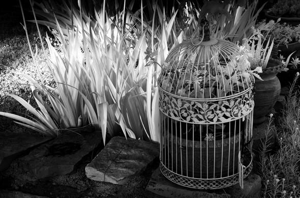 Une des nombreuses décorations dont Fabienne a embelli notre jardin...