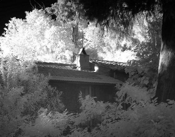 Vue de profil, la maison que l'on aperçoit de notre portail, et son écrin végétal.
