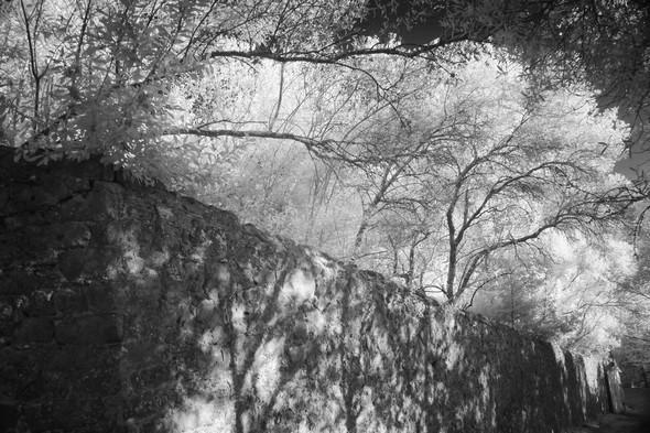 Mur d'enceinte du jardin du château Guglielmi.Au bas de la strada, on le longe au plus près.