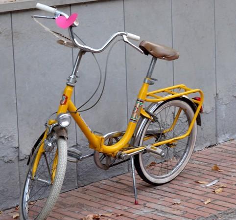Anche la piccola bicicletta gialla non è sfuggita al zelo dei maghi della nostra bella Isola !