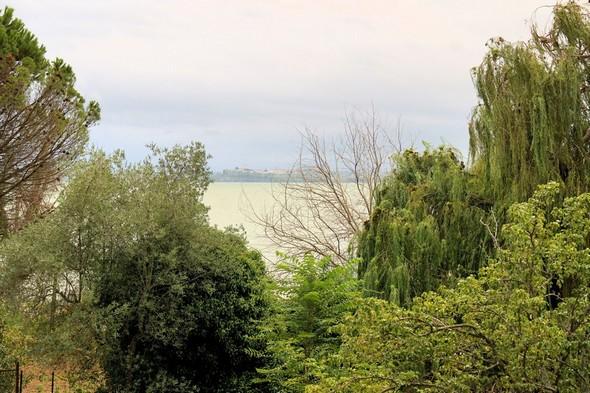 Un regard vers Tuoro-sul-Trasimeno.Depuis mon balcon et par-dessus les arbres de notre jardin et du voisin.Lac vert et ciels gris annonciateurs...