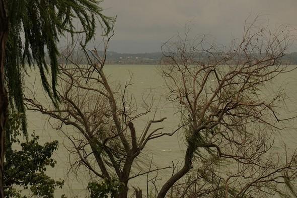 Encore la rive ouest en face de chez nous.Le ciel s'obscurcit davantage.La houle s'amplifie et commence à former des crêtes moutonneuses.