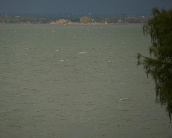 """De notre jardin, vue vers la rive ouest du Trasimène.Le lac de ce côté est toujours aussi vert.Et les """"moutons blancs"""" y bondissent allègrement.07:33"""