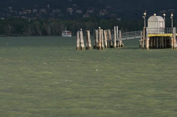 La bourrsque arrive au-dessus de Tuoro-sul-Trasimeno.A l'avant-plan, le pontile de l'Isola Maggiore.Plus loin, un traghetto s'éloigne de l'Isola.16/09/2017   -   08:36