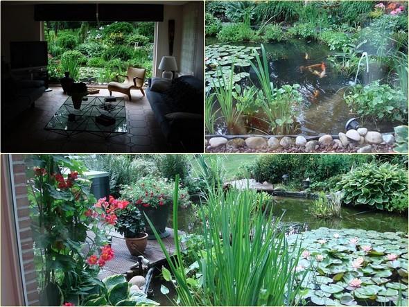 La vue magique depuis notre salon en Belgique.
