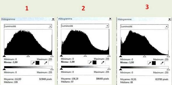 Histogramme des  trois photos suivantes.Léger glissement progressif de l'histogramme vers la gauche.
