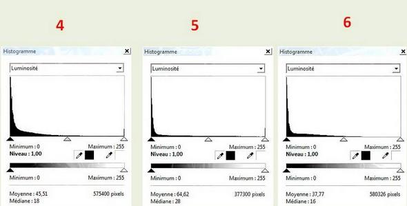 Histogramme des  trois photos suivantes.L'histogramme est complètement repoussé vers la gauche.