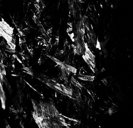 Le noir chante...
