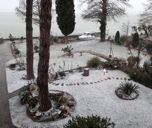 Un tapis neigeux peu convainquant prend place dans notre jardin.25 février 2018   -   17:30