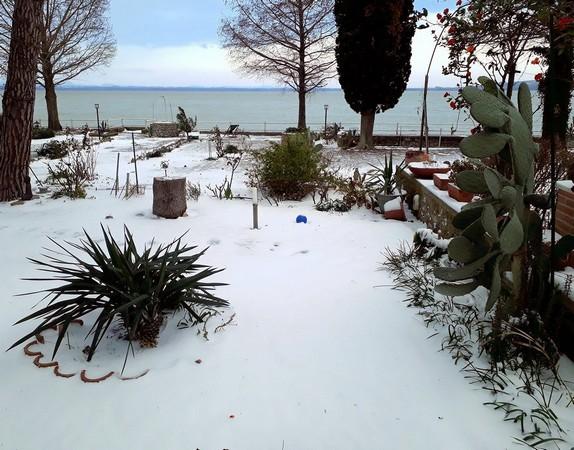 Après la bourrasque de cette nuit, la neige a bien pris possession de notre propriété.Un enchantement !26 février 2018,   08:00