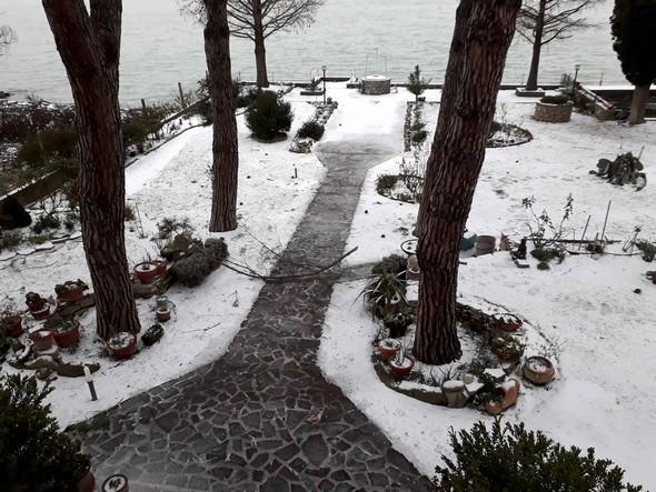 Contre toute attente, notre jardin est de nouveau sous la neige !C'est toujours aussi magique...1 mars 2018   :   07:45