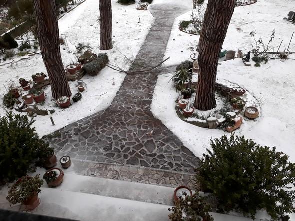 Par endroits, l'allée centrale de notre jardin est plutôt finement recouvert de glace...1 mars 2018    -    07:45