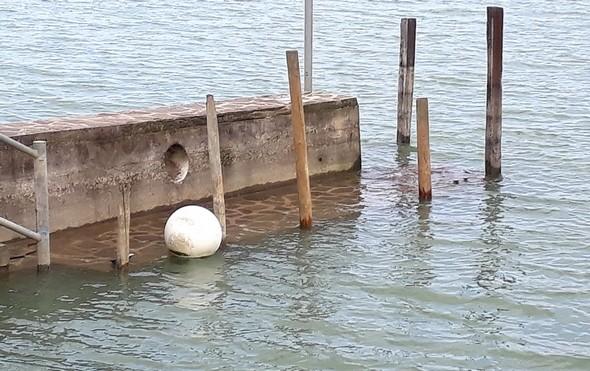 L'eau commence à recouvrir le prelier niveau du quai de notre darsena.25 mars 2018.