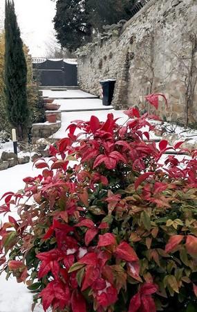 Vert, blanc, rouge... les couleurs de l'Italie !